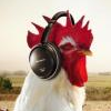 raze: rooster wearing headphones; sony ad. (music)