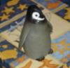 osmie: (Penguin)