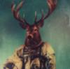 torchbug: (pic#6117974)