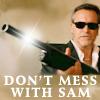 casett: (BN-sam-mess)