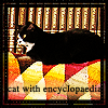 pensnest: black and white cat on vivid shawl in front of set of encyclopaedia (Cat with encyclopaedia)