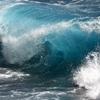 nifki: (wave) (Default)