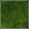 branchandroot: green color (green)