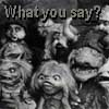 quicksilver_ink: Assorted goblins are confused. (what you say)