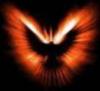 roslyn: (Phoenix)