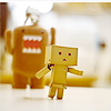 lar_laughs: (Danbo - running from danger)