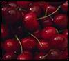 branchandroot: cherries (cherries)