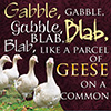 alltoseek: gabble gabble gabble blab blab blab like a parcel of geese on a common (geese)
