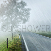 branchandroot: a sunshower (sunshower)
