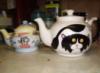 pandop: (teapots)