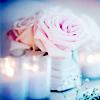 vanillarose: (vanilla rose beauty)