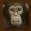 travelingmonkey: Chimp w/ glasses (Default)