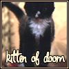 par_avion: (kitten of doom)