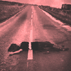 cadenzamuse: A woman lying on a road with the yellow lane divider stripe painted over her. (sad: flattened)