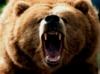 talon_tx: (don't poke the bear)