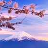 lynnie: (Fuji blossom)