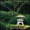 mokie: A Japanese lantern in front of lush green bushes (thoughtful, pensive, ambivalent, contemplative, recumbent)