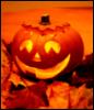 disgruntledgirl: Autumn, love autumn (pumpkin)