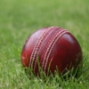 nineveh_uk: photograph of cricket ball lying on the grass (cricket)