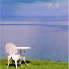 bermuda_jen: Wrought iron table and chair painted white, on a hill overlooking the sea around Bermuda. (My table by the sea, personal)