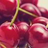 shibuichi: (cherries)
