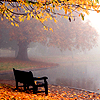 draconis: (misty autumn lake)
