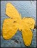 lupinedream: (butterfly)
