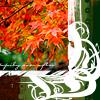 regann: (autumn)
