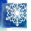 regann: (snowflake)