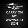 veritas_poet: (SPN - Carry on my wayward son)