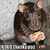 freyakitten: Rodent Of Unusual Size eating a cookie (ROUS)