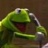 panicum: (kermit on the phone)
