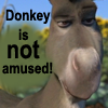 ladydrace: (Donkey is NOT Amused)