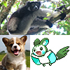 a1enzo: Indri, Corgi pup, and Emolga (Cubefall '13)