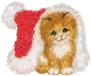 carynb: (Christmas Kitten)