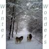 carynb: (Wintertime)