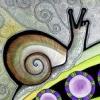 snaegl: (Tribal Snail)