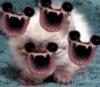 eatingbamboo: (mouths)