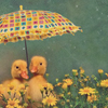 sally_maria: (Ducks)