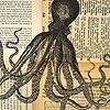 forthwritten: (squid&ink)