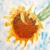 samvara: Painting of a sunflower (Sunflower)