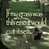 "samvara: Photo of a Sam crouched near a grave and the text ""If my grass was this emo it would cut itself"" (SPN - Sam - Emo)"