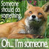 "samvara: Photo of a fox looking thoughtful and text ""Someone should do something... Oh... I'm someone"" (Do something)"