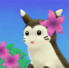 pyrrhocorax: a furret has a pink flower behind her ear (tropical furret)