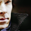 luciazephyr: Sherlock, sharply in focus but barely in frame ([SH] call it crying lightning)