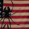bayoumaharajah: Part of American flag with Killjoys spider logo on it (spider, flag, killjoys) (Default)