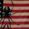 bayoumaharajah: Part of American flag with Killjoys spider logo on it (Default)