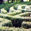 lferion: (Spirit_labyrinth)