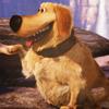 talkingdog: (pleased to meet you good sir/madam)