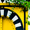 juniperphoenix: Leaves hanging over a yellow door with a black-and-white-striped archway (Door 2)